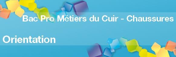 Bac Pro Métiers du Cuir option Chaussures : Inscription