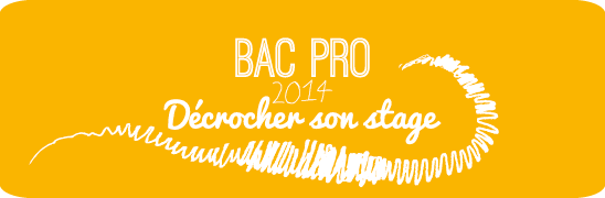 stage bac pro 2014