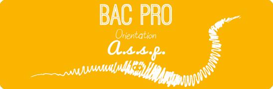 Bac Pro Assp Admission Formation Et Débouchés