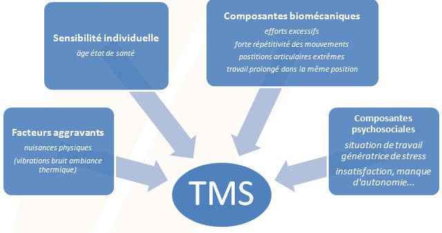 Causes et facteurs aggravants des troubles musculo-squelettiques - Cours PSE gratuit Bac PRO
