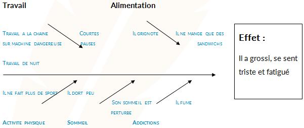 Exemple de diagramme d'Ishikawa - Méthodologie PSE Bac PRO