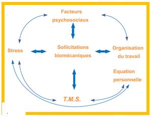 Relations entre les différents facteurs à l'origine des TMS - Cours PSE gratuit Bac PRO