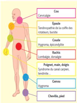 Principaux troubles musculo-squelettiques - Cours PSE gratuit Bac PRO